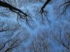 Lichtbildnergruppe Esslingen - ©A.Kaier