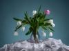 1.Platz – U.Keller – Clubwettbewerb Blumenstrauß