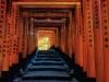 ©M.Steeb - Japan - Kyoto